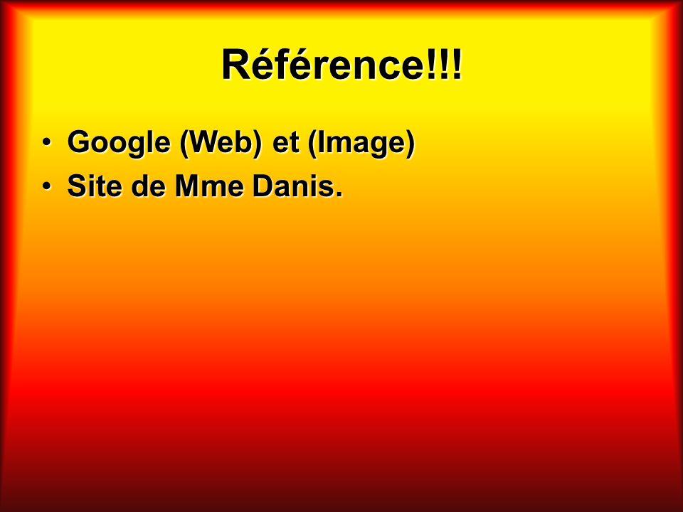 Référence!!! Google (Web) et (Image) Site de Mme Danis.