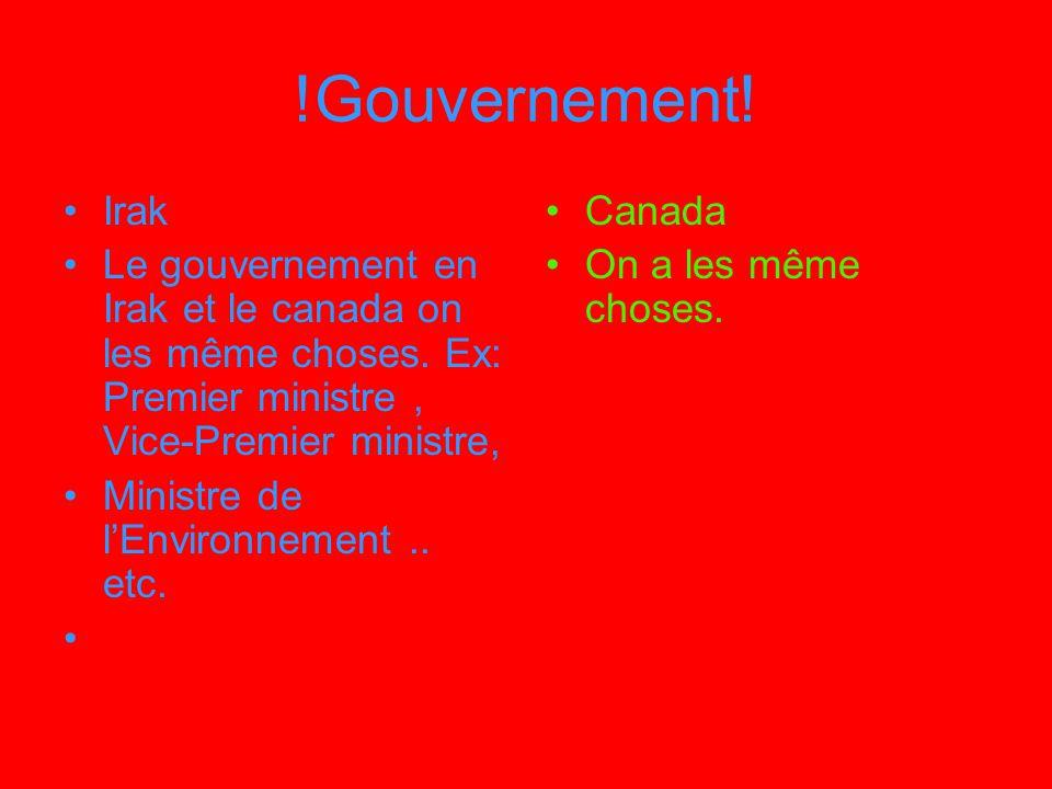 !Gouvernement! Irak. Le gouvernement en Irak et le canada on les même choses. Ex: Premier ministre , Vice-Premier ministre,