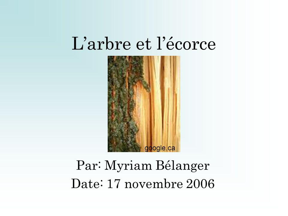 Par: Myriam Bélanger Date: 17 novembre 2006