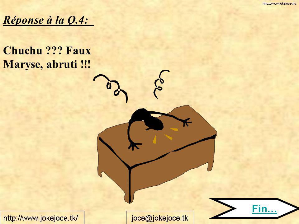 Réponse à la Q.4: Chuchu Faux Maryse, abruti !!! Fin…