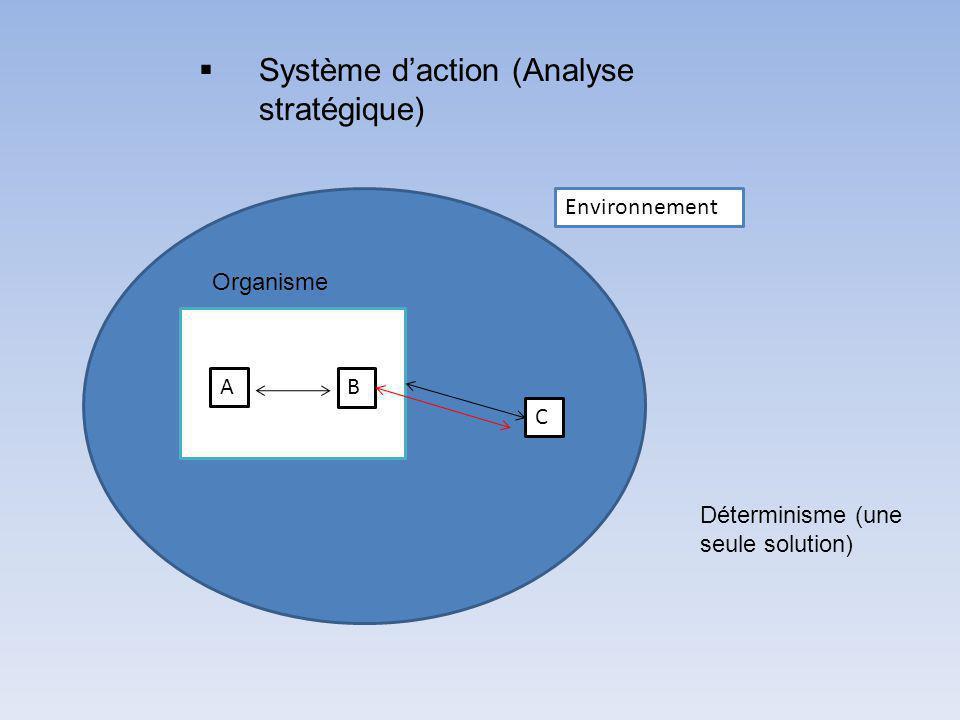 Système d'action (Analyse stratégique)