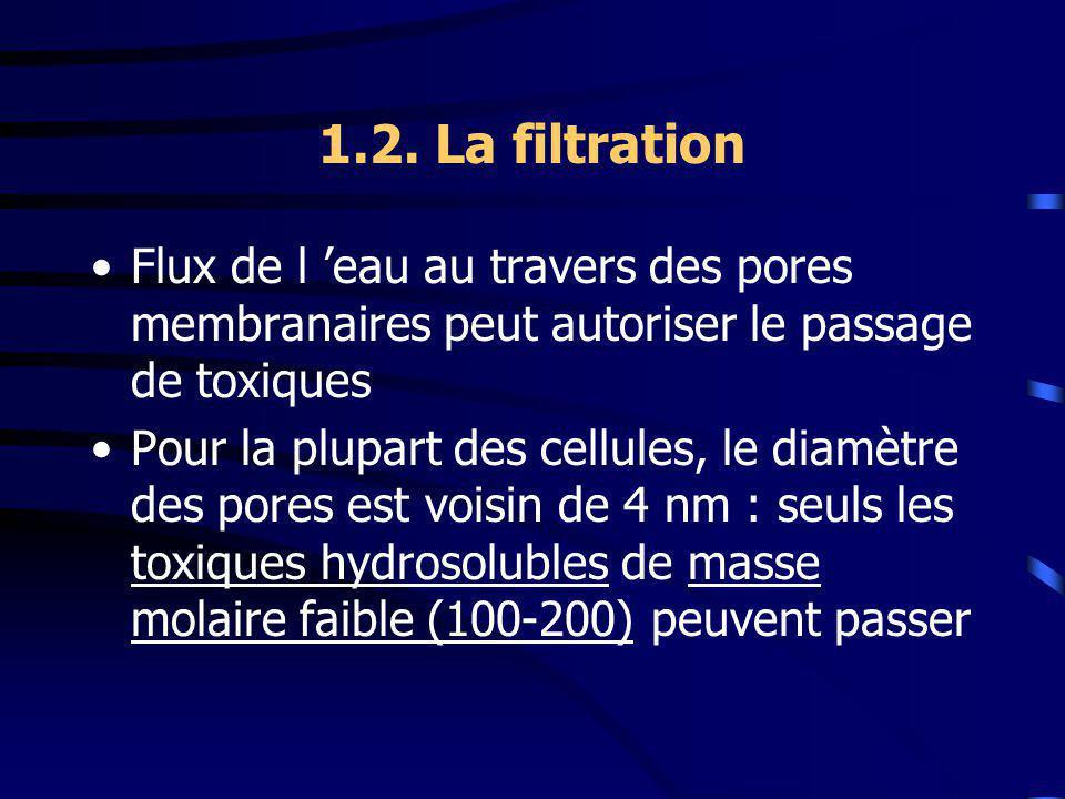 1.2. La filtration Flux de l 'eau au travers des pores membranaires peut autoriser le passage de toxiques.