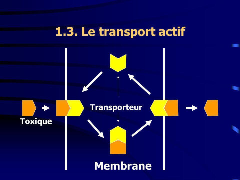 1.3. Le transport actif Transporteur Toxique Membrane