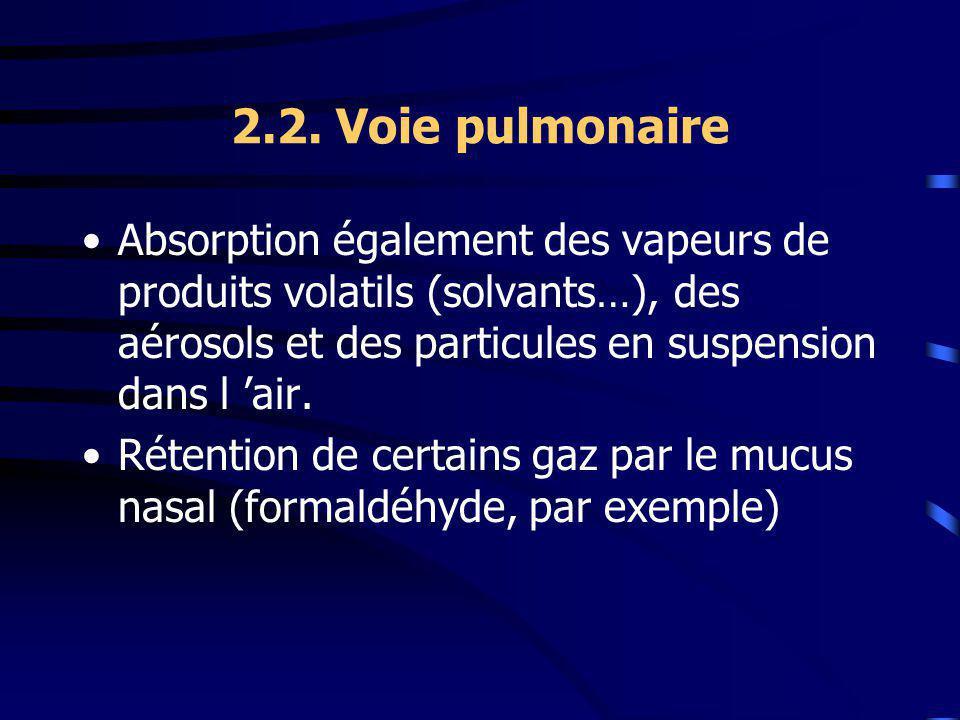 2.2. Voie pulmonaire Absorption également des vapeurs de produits volatils (solvants…), des aérosols et des particules en suspension dans l 'air.
