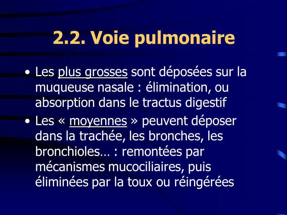2.2. Voie pulmonaire Les plus grosses sont déposées sur la muqueuse nasale : élimination, ou absorption dans le tractus digestif.