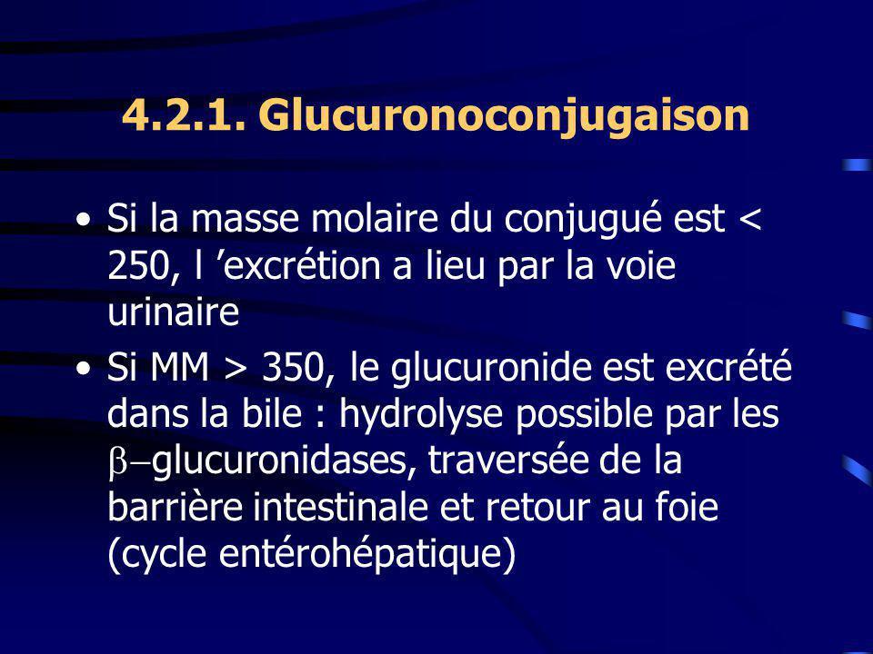 4.2.1. Glucuronoconjugaison