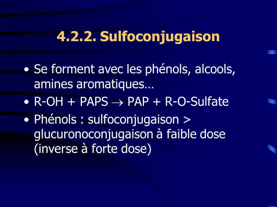 4.2.2. Sulfoconjugaison Se forment avec les phénols, alcools, amines aromatiques… R-OH + PAPS  PAP + R-O-Sulfate.