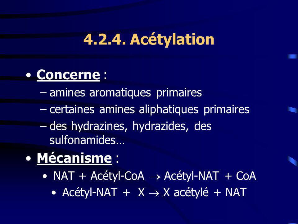 4.2.4. Acétylation Concerne : Mécanisme : amines aromatiques primaires