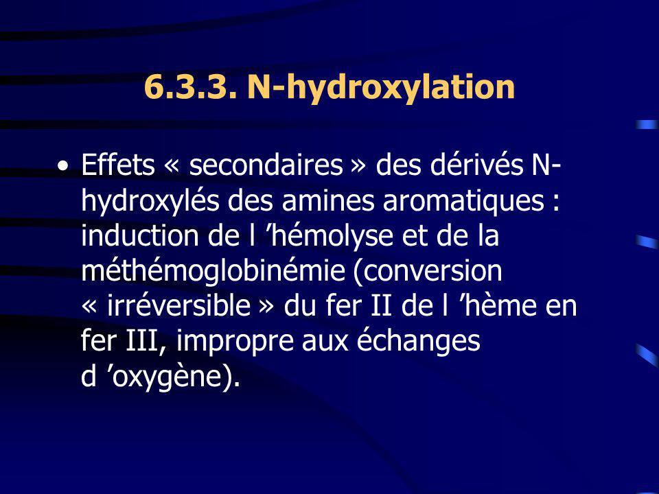6.3.3. N-hydroxylation