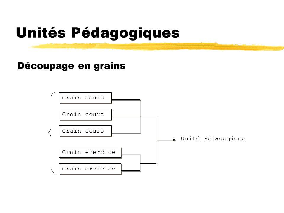 Unités Pédagogiques Découpage en grains Grain cours Grain cours