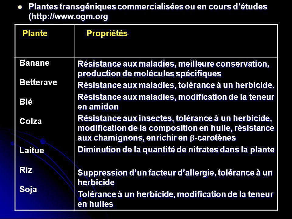 Plantes transgéniques commercialisées ou en cours d'études (http://www