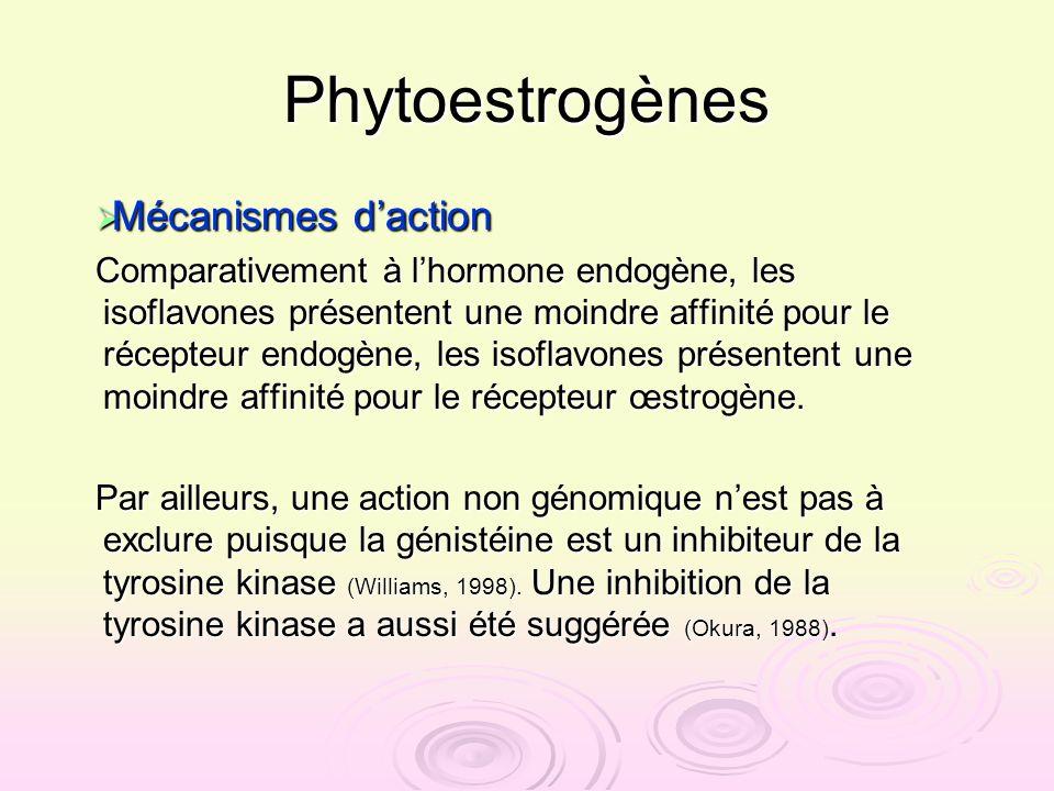 Phytoestrogènes Mécanismes d'action