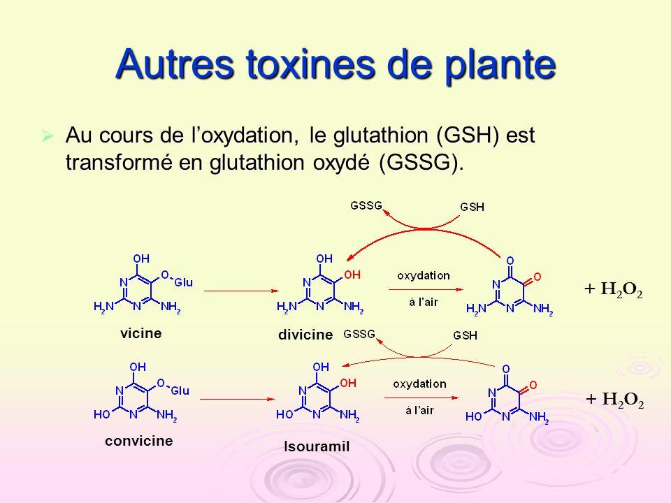 Autres toxines de plante