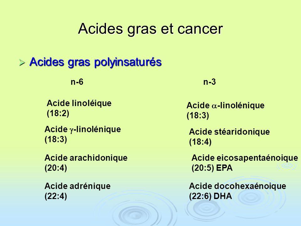 Acides gras et cancer Acides gras polyinsaturés n-6 n-3