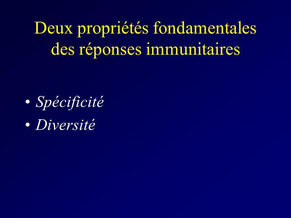 Deux propriétés fondamentales des réponses immunitaires