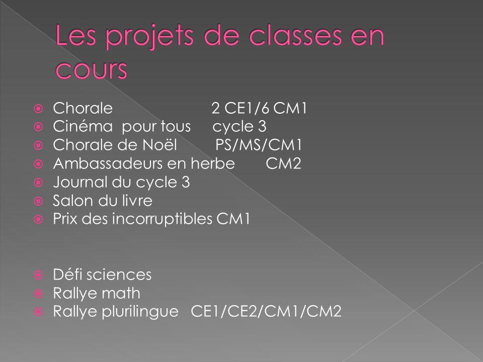Les projets de classes en cours