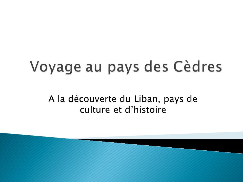 Voyage au pays des Cèdres