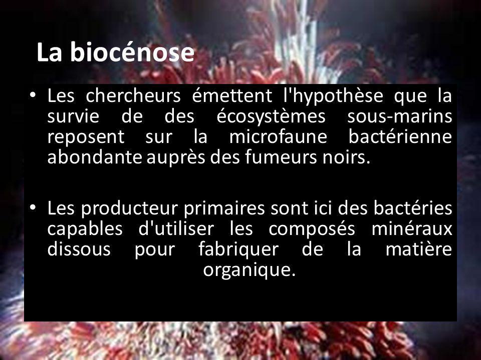 La biocénose
