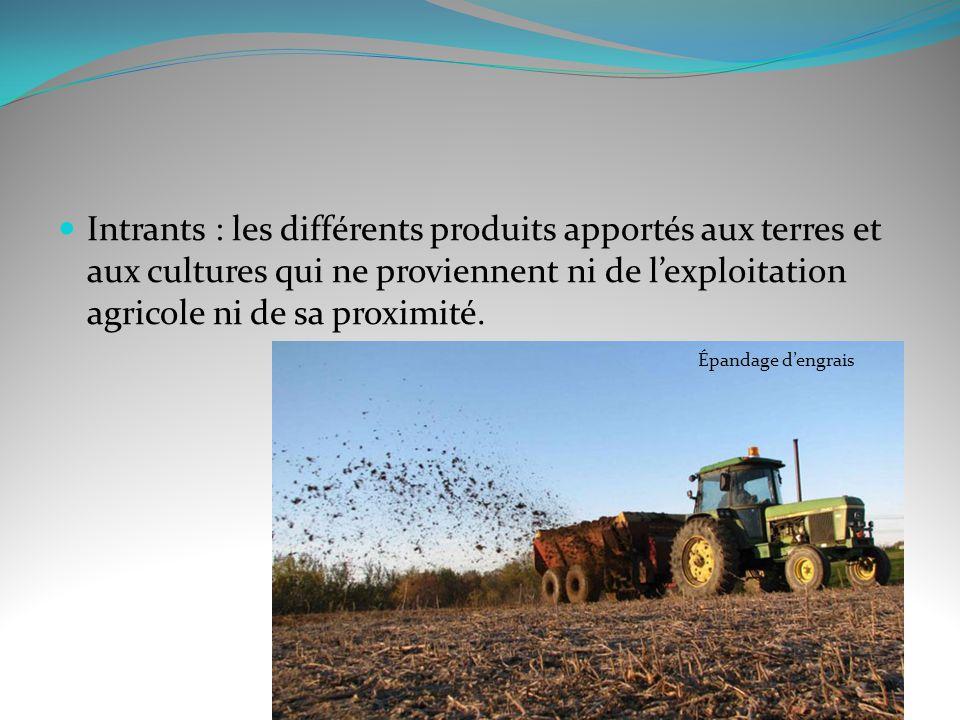 Intrants : les différents produits apportés aux terres et aux cultures qui ne proviennent ni de l'exploitation agricole ni de sa proximité.