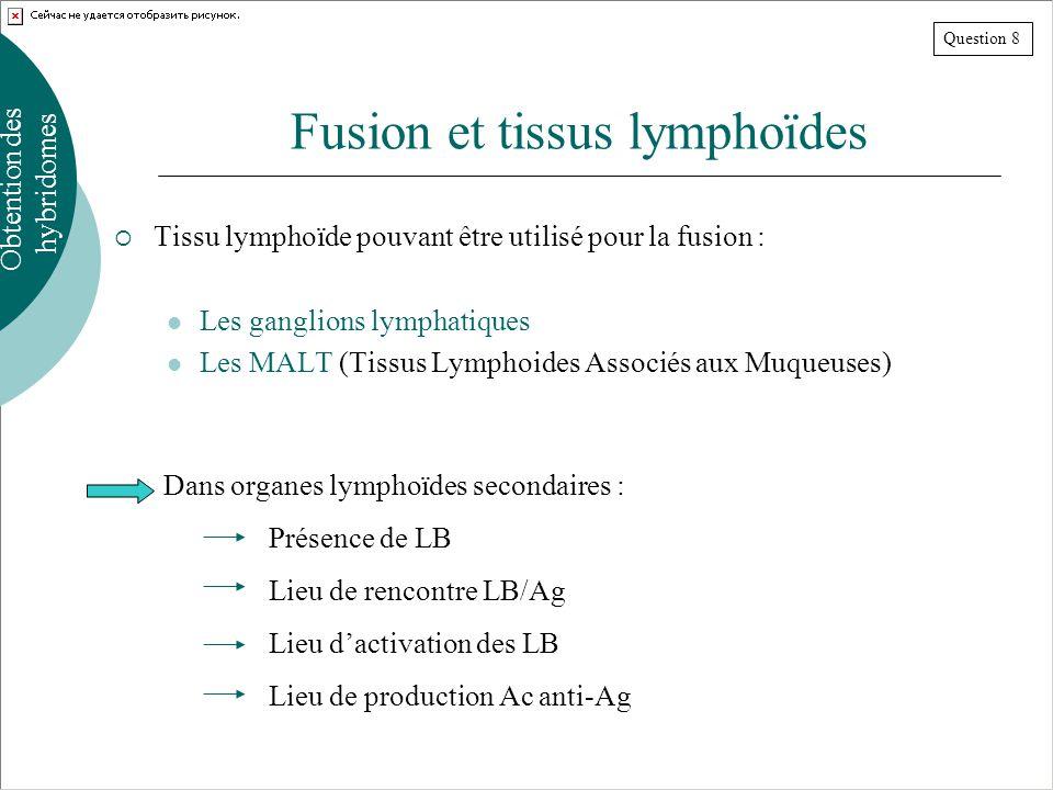 Fusion et tissus lymphoïdes