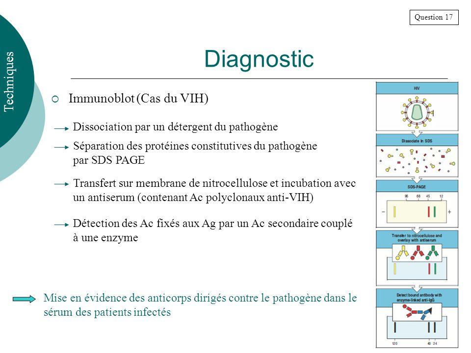 Diagnostic Techniques Immunoblot (Cas du VIH)
