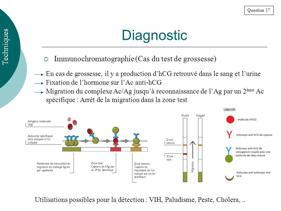 Diagnostic Techniques Immunochromatographie (Cas du test de grossesse)