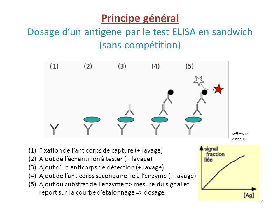 Principe général Dosage d'un antigène par le test ELISA en sandwich (sans compétition)