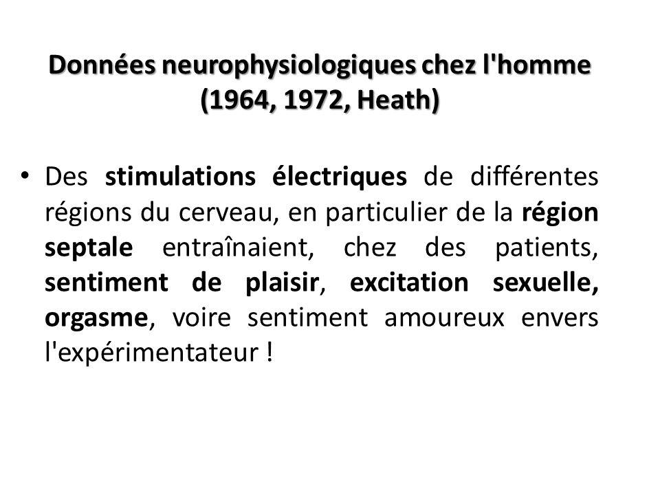 Données neurophysiologiques chez l homme (1964, 1972, Heath)
