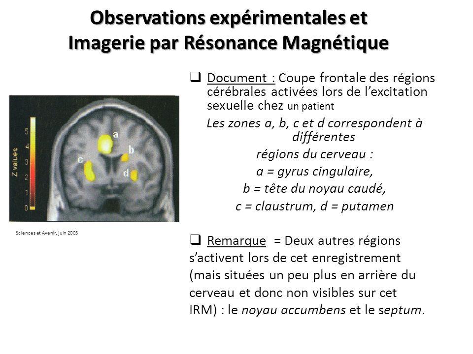 Observations expérimentales et Imagerie par Résonance Magnétique