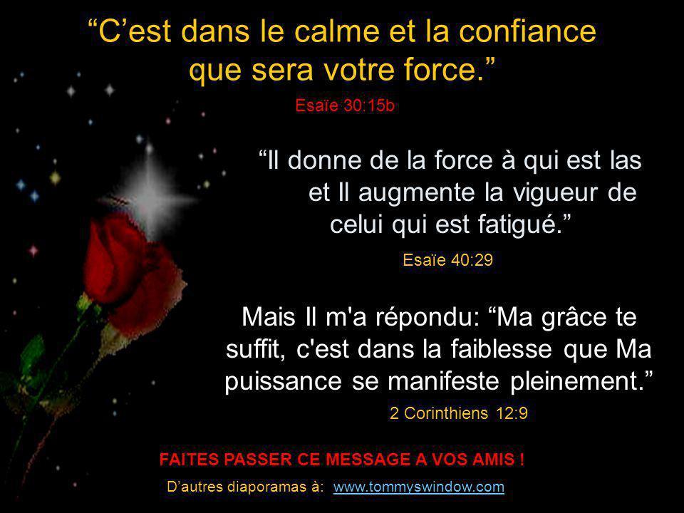 FAITES PASSER CE MESSAGE A VOS AMIS !
