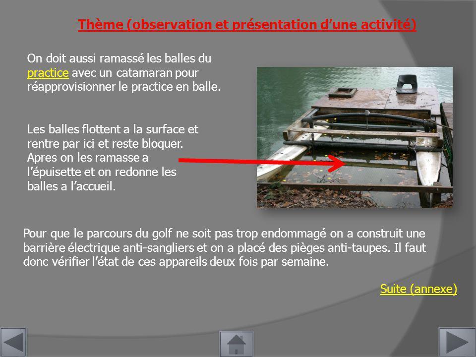 Thème (observation et présentation d'une activité)