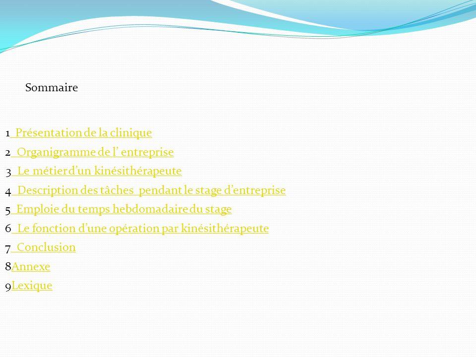Sommaire 1 Présentation de la clinique. 2 Organigramme de l' entreprise. 3 Le métier d'un kinésithérapeute.