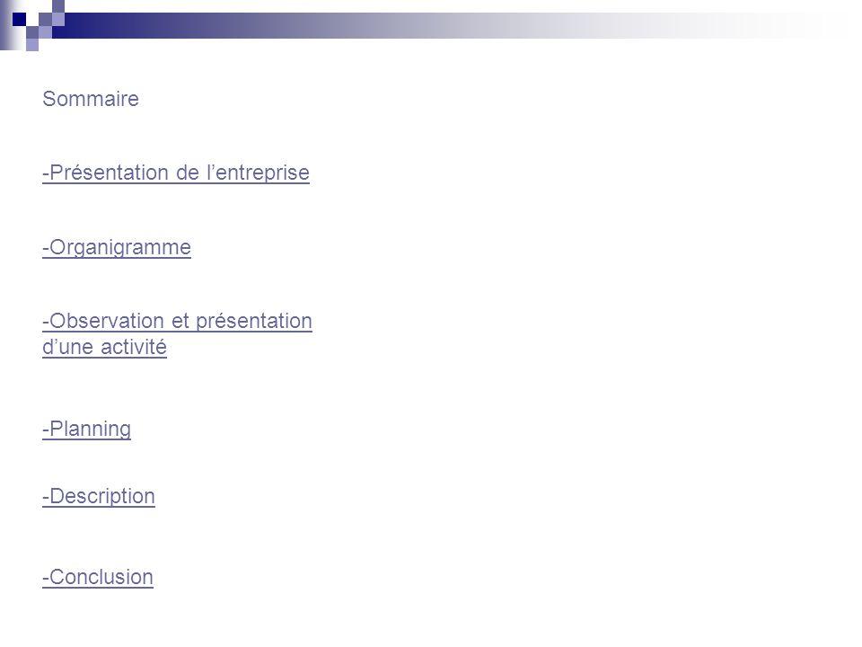 Sommaire -Présentation de l'entreprise. -Organigramme. -Observation et présentation d'une activité.