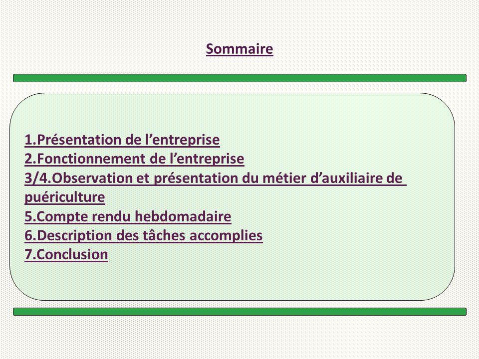 Sommaire 1.Présentation de l'entreprise. 2.Fonctionnement de l'entreprise. 3/4.Observation et présentation du métier d'auxiliaire de.