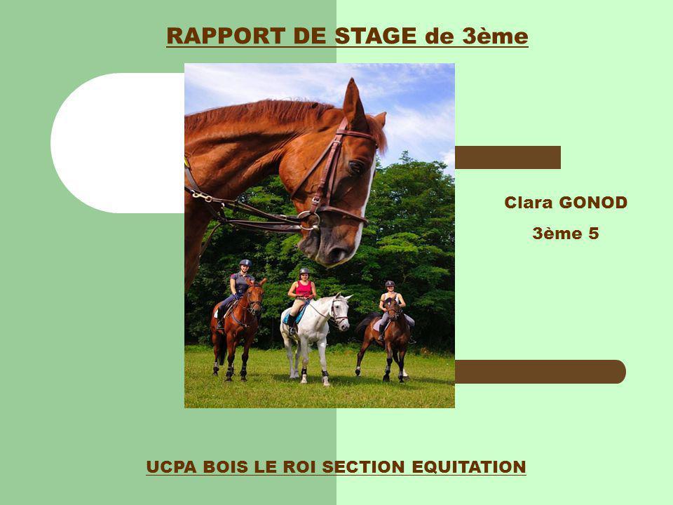 UCPA BOIS LE ROI SECTION EQUITATION