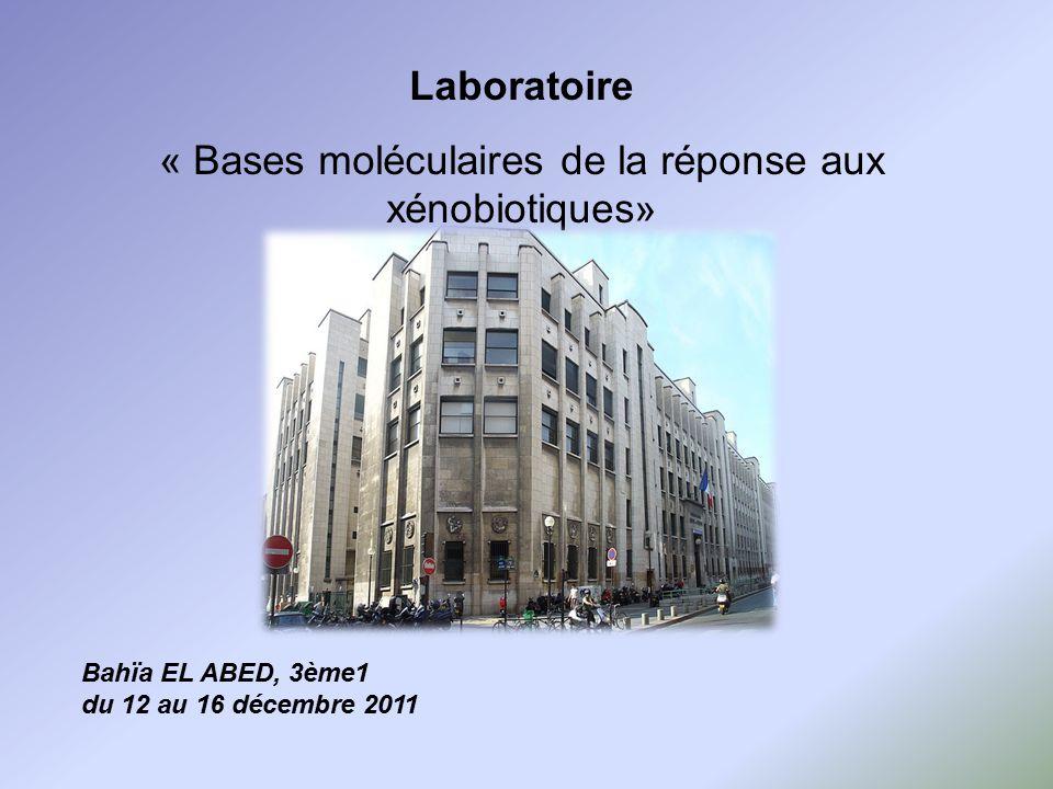 « Bases moléculaires de la réponse aux xénobiotiques»