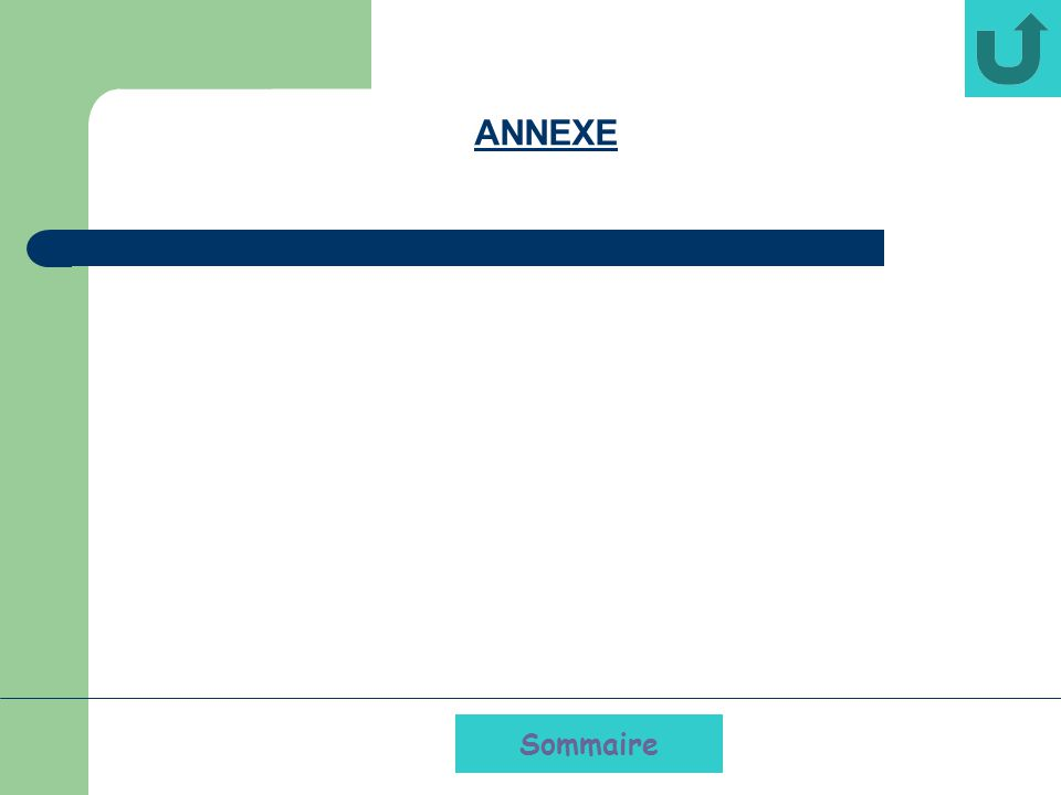 ANNEXE Sommaire