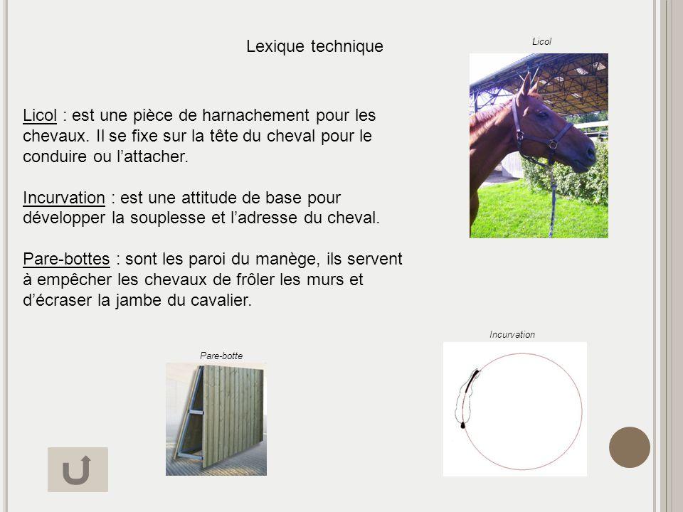 Lexique technique Licol.