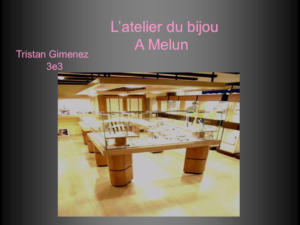 L'atelier du bijou A Melun Tristan Gimenez 3e3