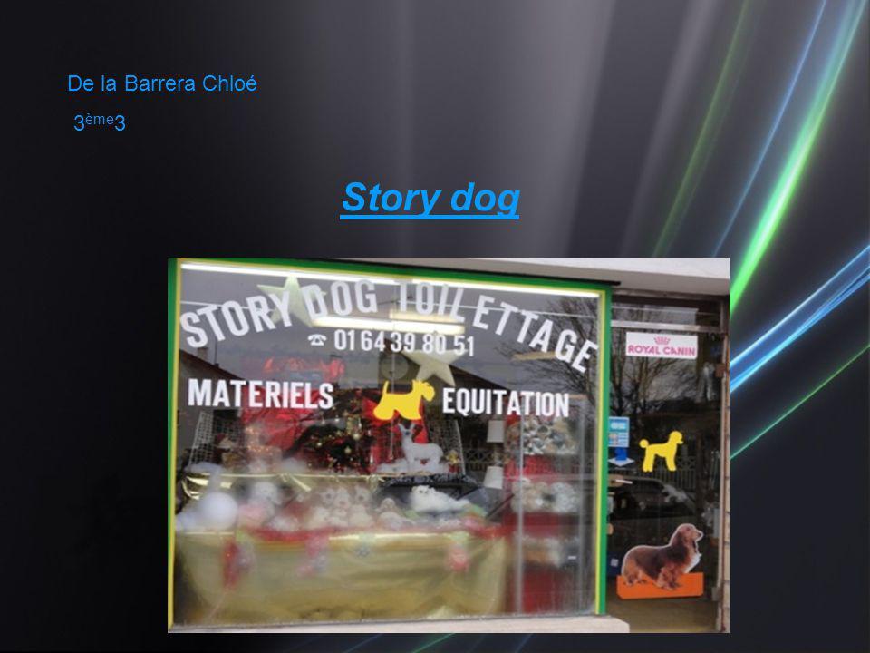 De la Barrera Chloé 3ème3 Story dog