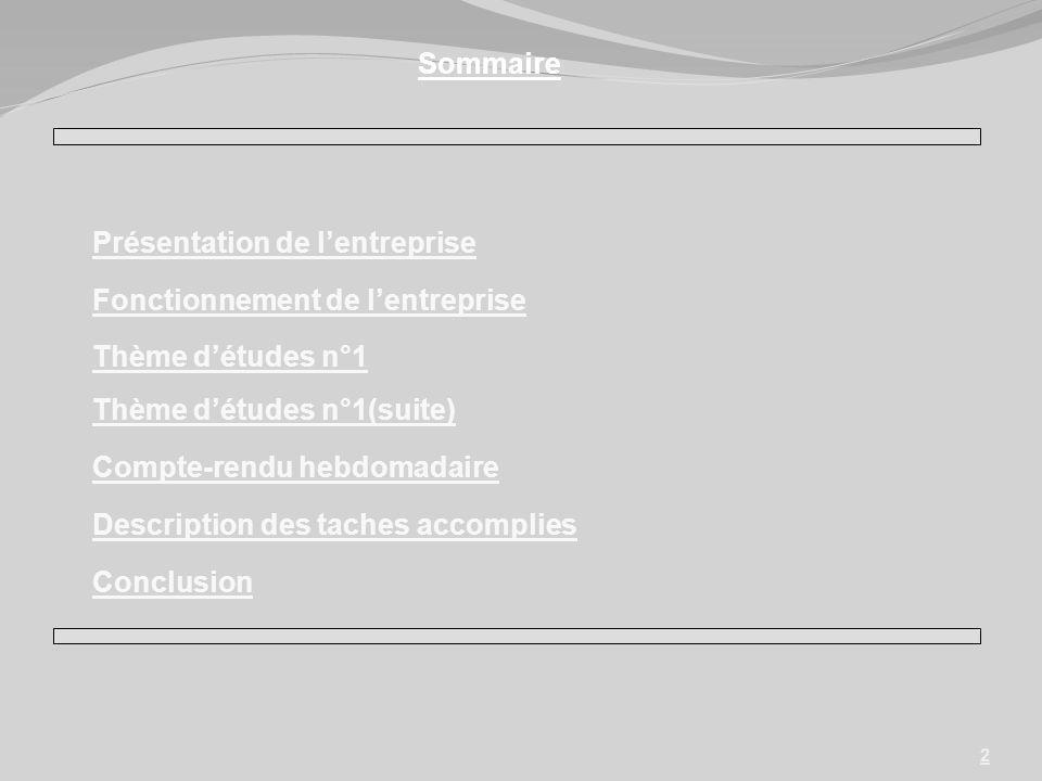 Sommaire Présentation de l'entreprise. Fonctionnement de l'entreprise. Thème d'études n°1. Thème d'études n°1(suite)