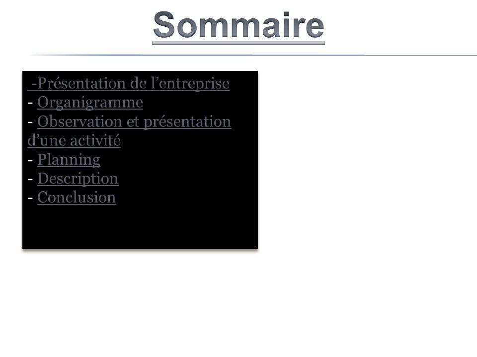 Sommaire -Présentation de l'entreprise Organigramme
