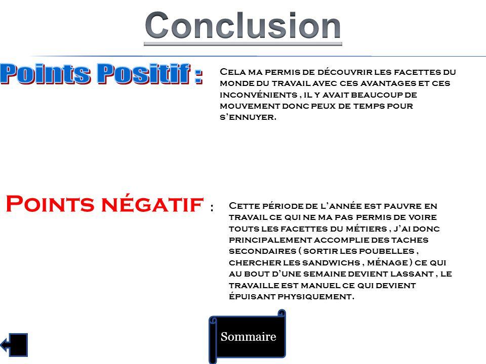 Conclusion Points Positif : Points négatif : Sommaire