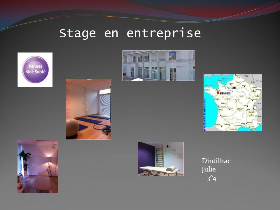 Stage en entreprise Dintilhac Julie 3°4