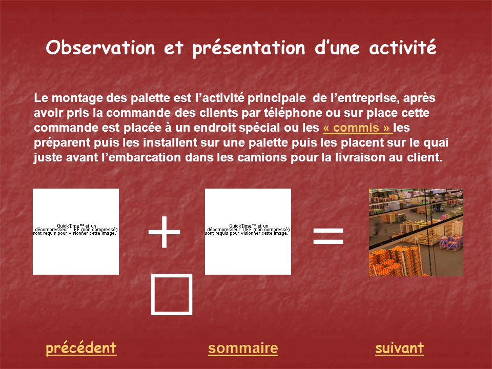 + = Observation et présentation d'une activité précédent sommaire