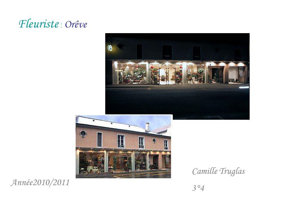 Fleuriste : Orêve Camille Truglas 3°4 Année2010/2011