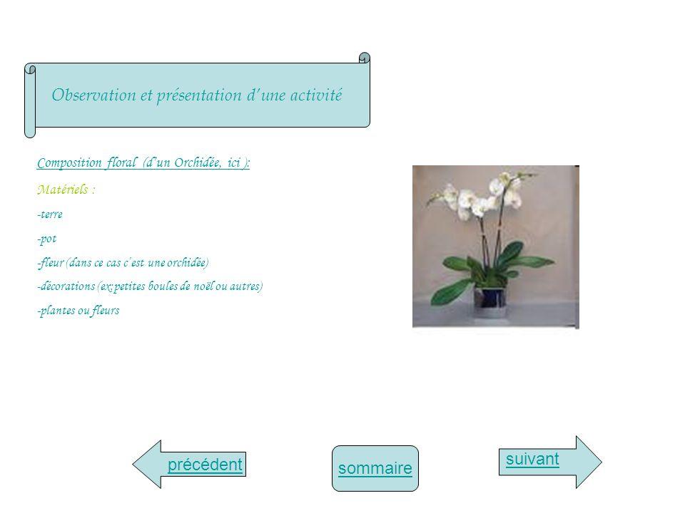 Observation et présentation d'une activité