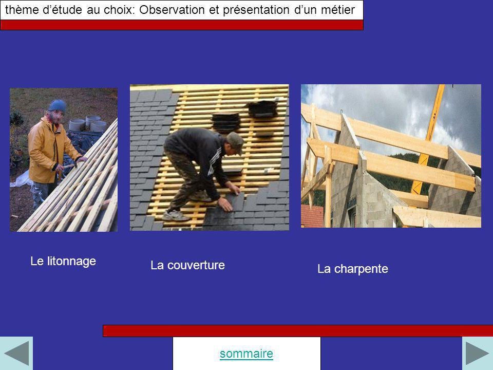 thème d'étude au choix: Observation et présentation d'un métier
