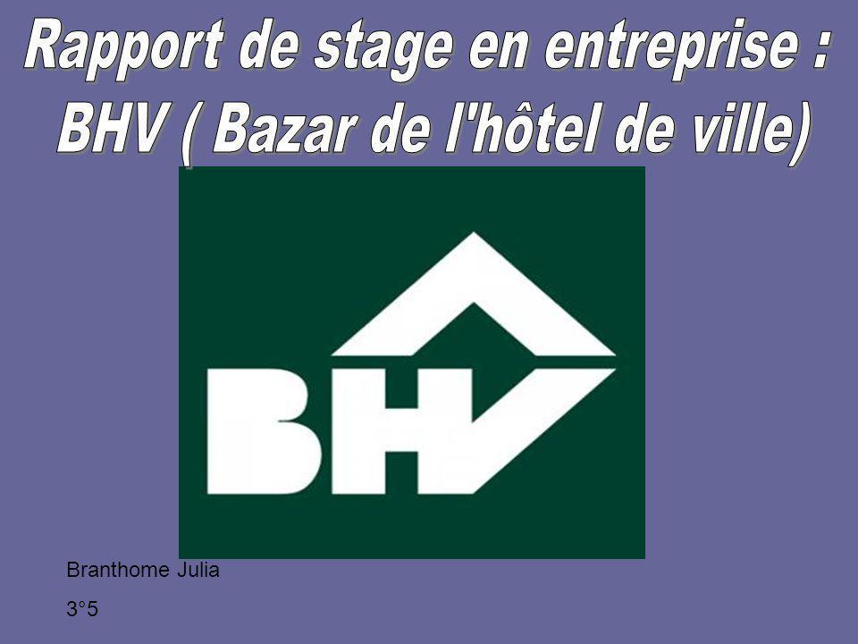rapport de stage en entreprise bhv bazar de l 39 h tel de. Black Bedroom Furniture Sets. Home Design Ideas