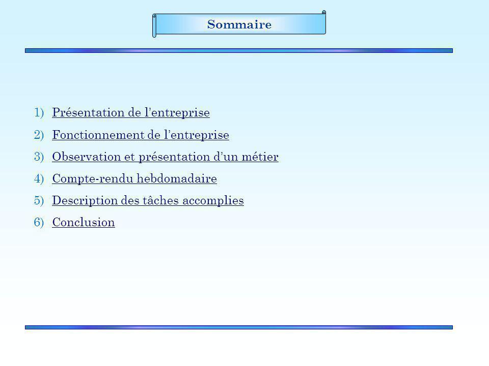 Sommaire Présentation de l'entreprise. Fonctionnement de l'entreprise. Observation et présentation d'un métier.